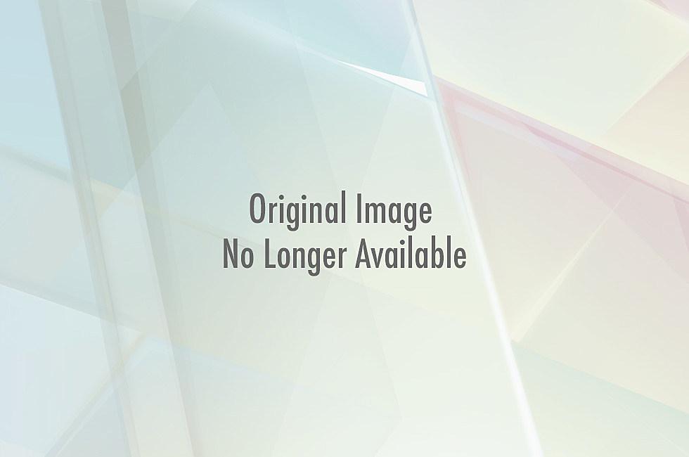 Lynyrd Skynyrd at Meadowbrook Poster