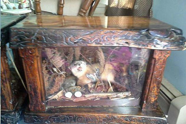 craigslist man cave taxidermy furniture set!